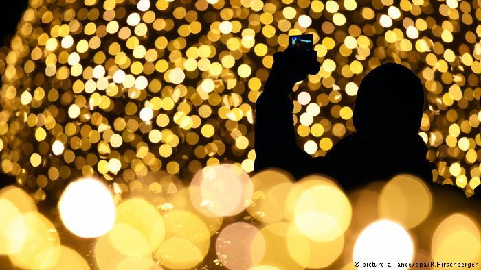 Berlin Botanik Bahçesi, sihirli bir Noel Bahçesine dönüştü